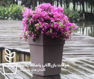 قیمت گلدان پلاستیکی