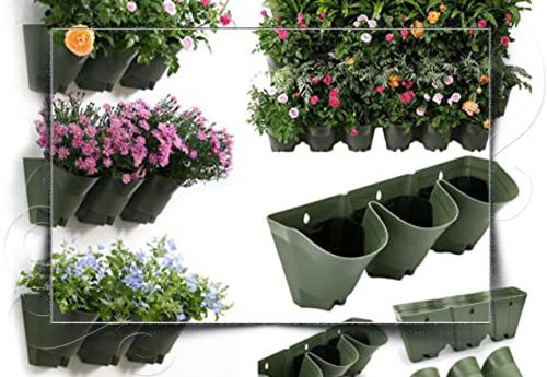 گلدان پلاستیکی دیوار سبز